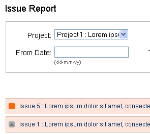 screenshot of issue report page